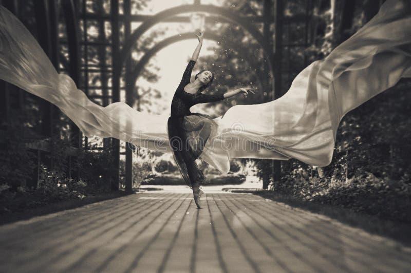 Ballerina sulle vie fotografia stock libera da diritti