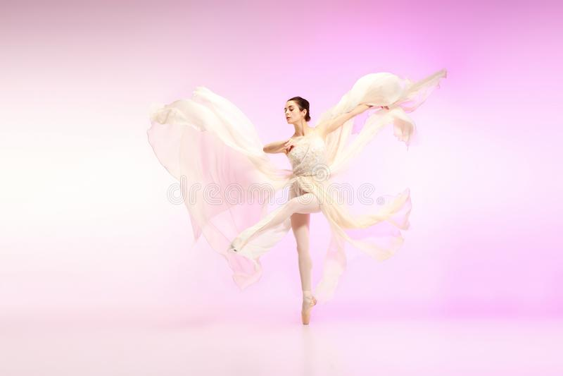 Ballerina Ung behagfull kvinnlig balettdansördans över rosa studio Skönhet av klassisk balett royaltyfria foton