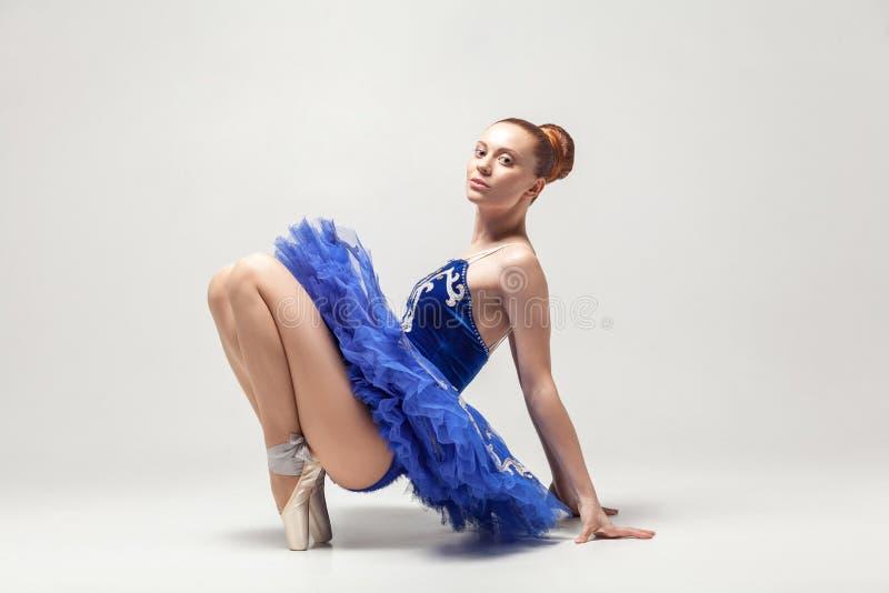 Ballerina in vestito blu che sta sulle dita del piede nelle scarpe e nel gabinetto del pointe fotografie stock