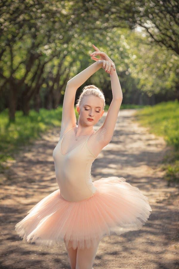 Ballerinadans utomhus i grönt skoglandskap på solnedgången royaltyfri foto