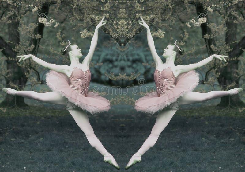 ballerinadiptych royaltyfria foton