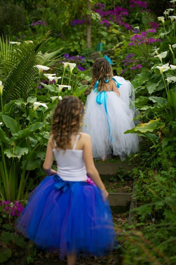 Ballerinakjolflickor. fotografering för bildbyråer