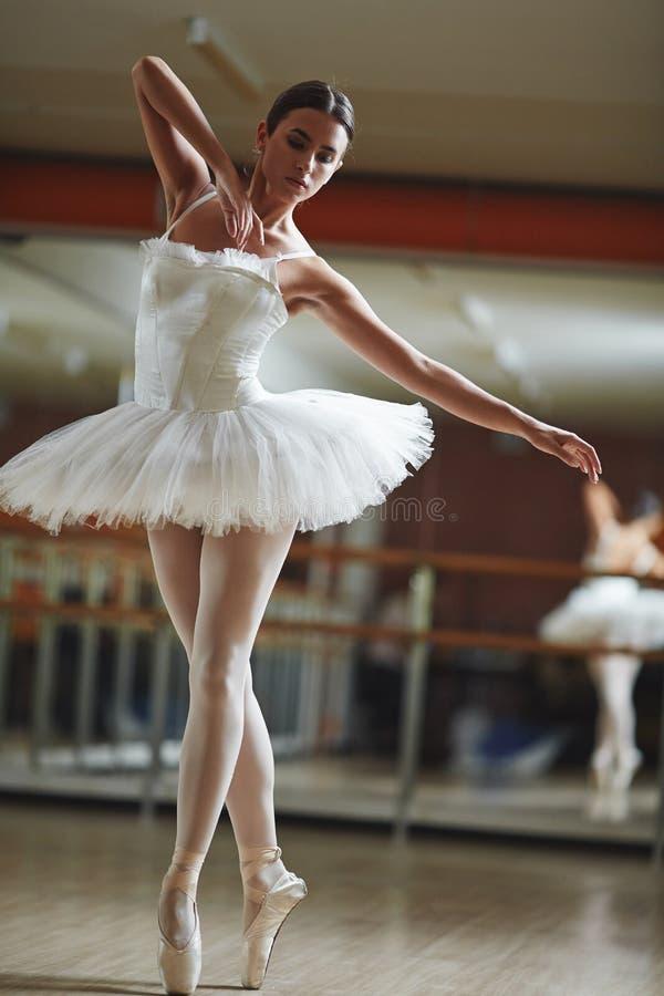 Ballerine blanche de cygne photos stock