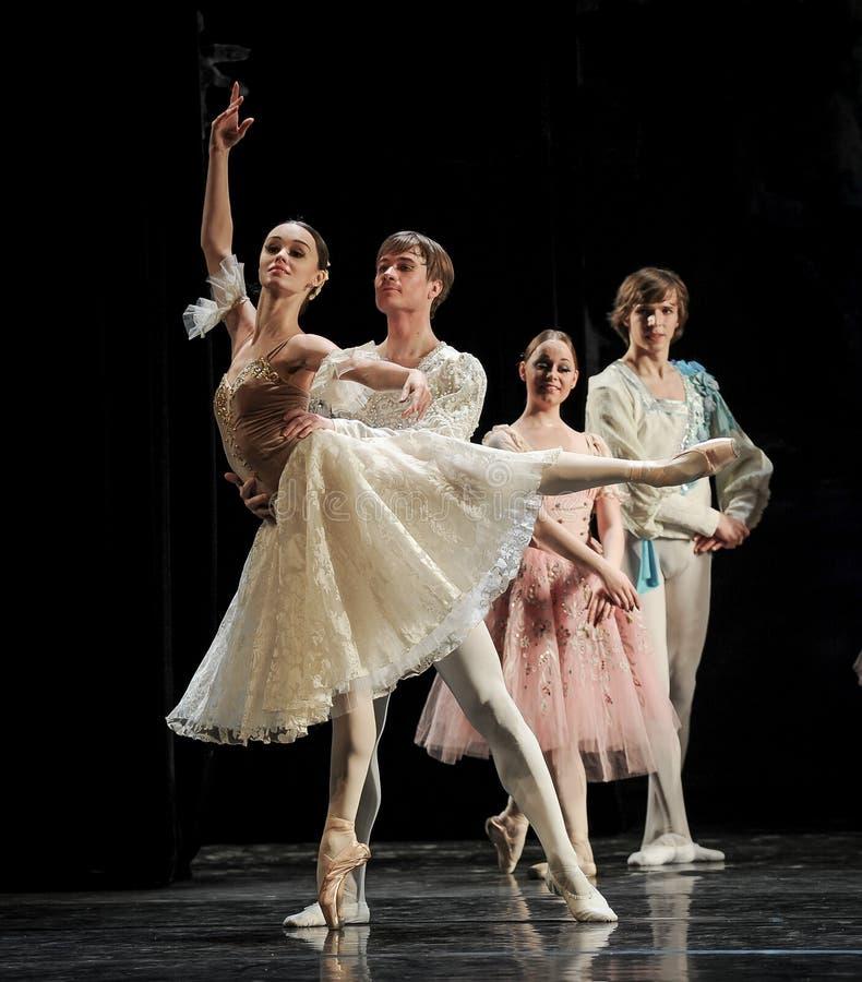 Ballerini di balletto eleganti nel lago swan immagini stock libere da diritti