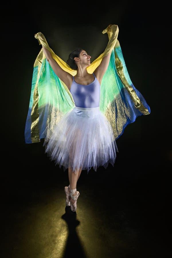 Ballerino vibrante #8 fotografia stock libera da diritti