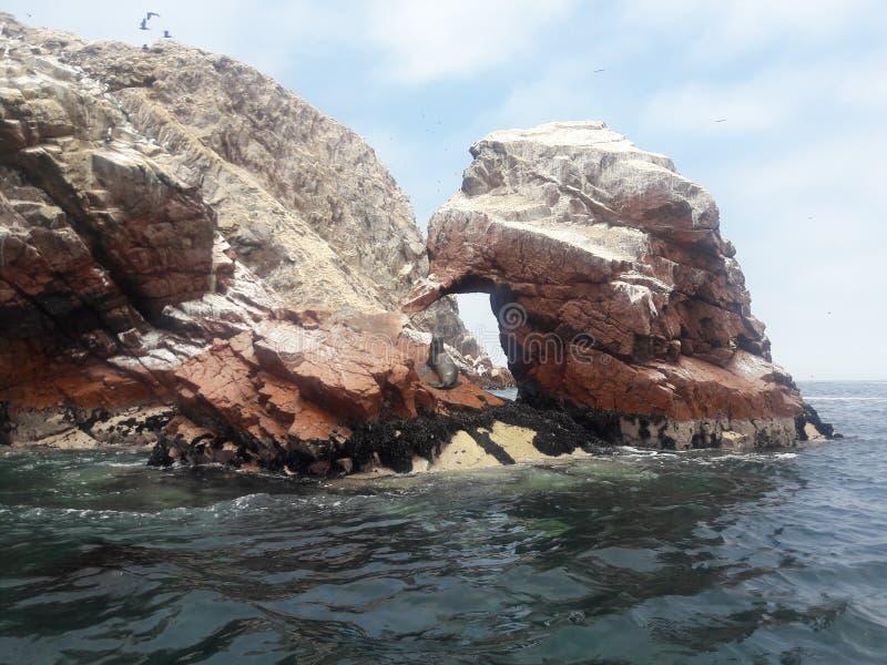 Ballestas Islands Paracas Peru rock formaties pelicans pinguins sea leeuwen royalty-vrije stock afbeeldingen