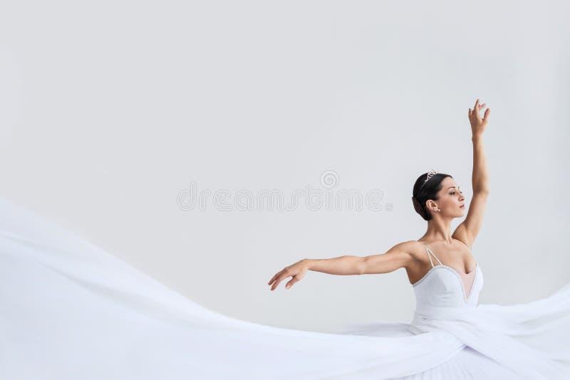 ballet photographie stock