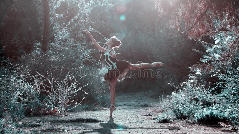 Ballet Dancer In Forest Glade Free Public Domain Cc0 Image