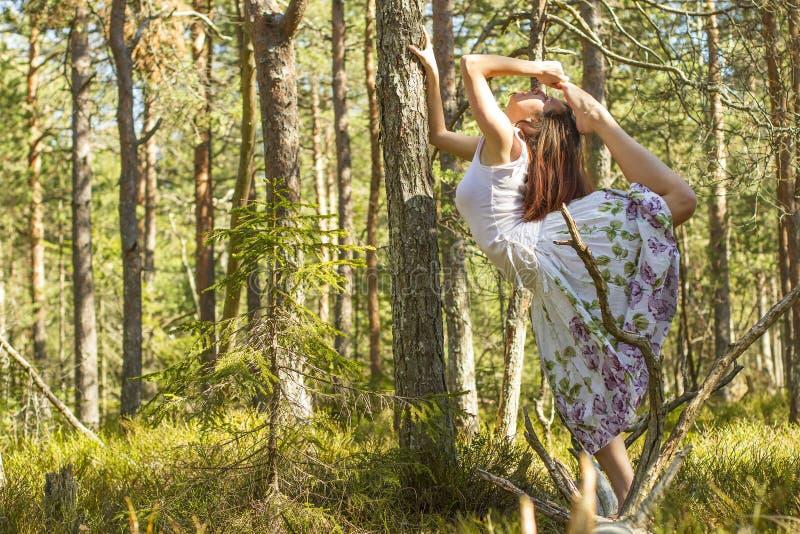 Download Ballet dans la forêt image stock. Image du fairyland - 45372143