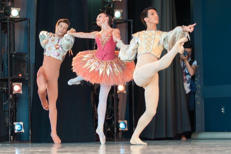 Ballet in het Park stock afbeelding