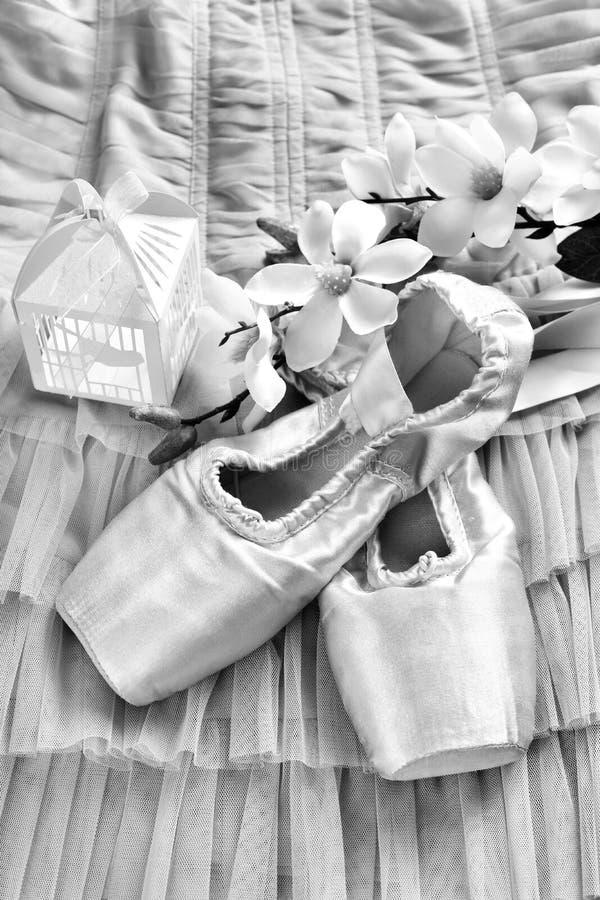 Ballet pointe schoenen die op de kleding van Tulle in zwart-wit liggen stock foto's
