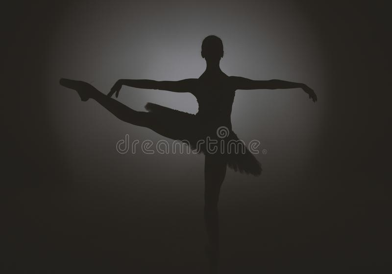 Balletdanser Dance Art Jump Sneaker stock foto