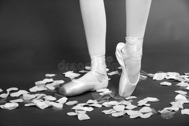 Balletdanser On Pointe stock foto's