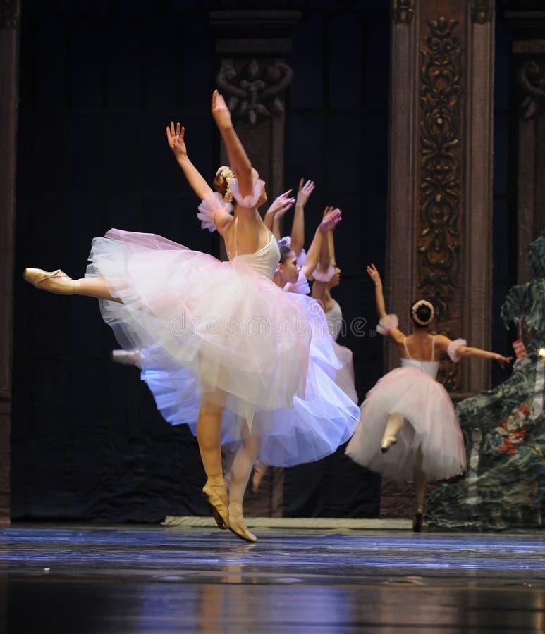 Balletrok stock afbeeldingen
