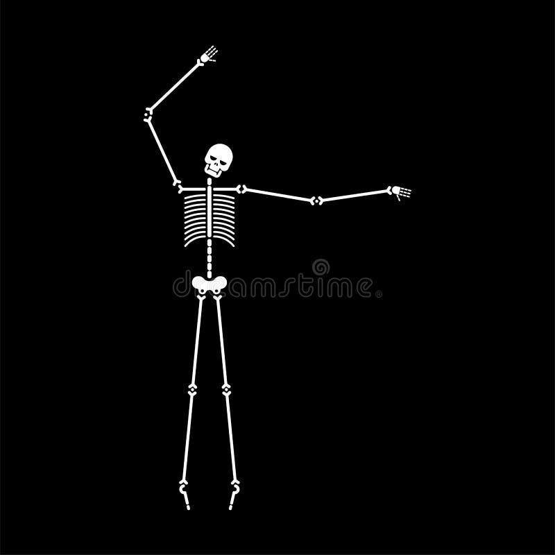 Ballo di scheletro isolato Balli dell'osso e del cranio Illustrat di vettore illustrazione vettoriale