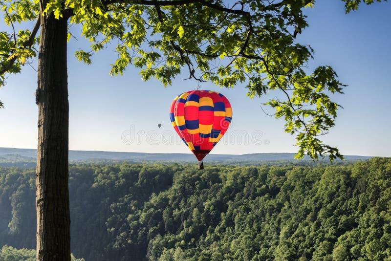 Ballon à air chaud pendant le début de la matinée photographie stock libre de droits