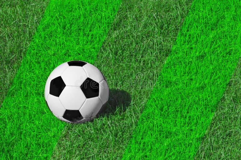 Ballon de football classique blanc et noir sur l'herbe de pré verte fraîche, l'espace de copie pour le texte, le football de conc photos libres de droits