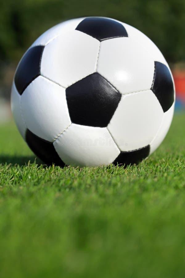 Ballon de football sur l'herbe photos libres de droits