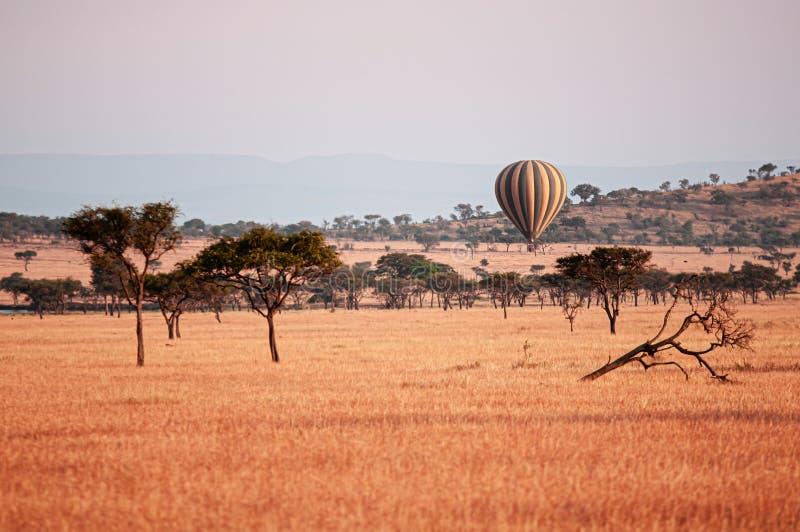 Ballon de luxe flottant sur les prairies d'herbe du Serengeti Savanna - voyage Safari en Tanzanie en Afrique photo libre de droits