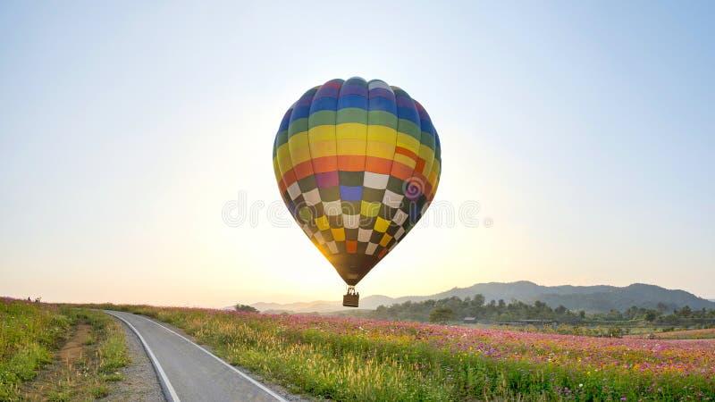 Ballon latanie na polu zdjęcia royalty free