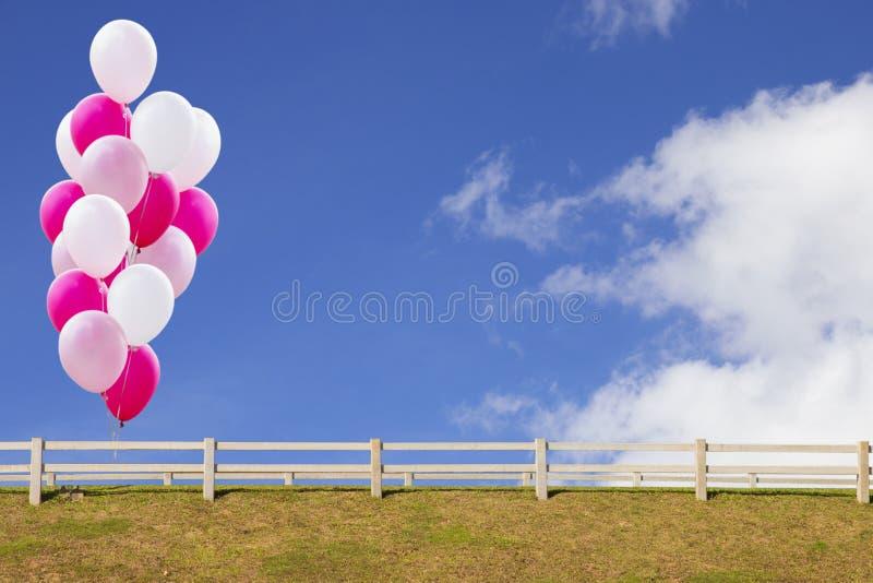 Ballone auf dem blauen Himmel mit hölzernem Zaun und Gras stock abbildung