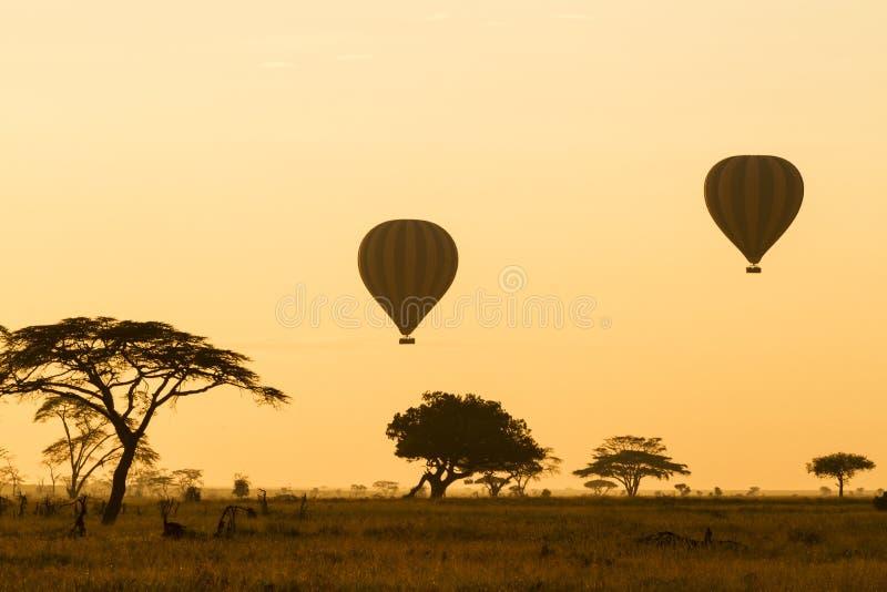 Ballonger för varm luft över Serengetien arkivfoton