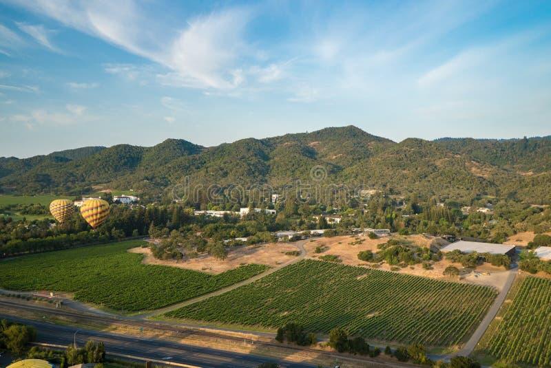 Ballonger för varm luft som svävar ovanför vingårdar arkivfoton