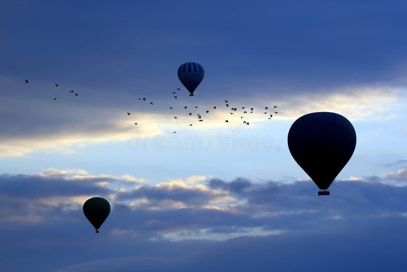 Ballonger med folk som flyger i bakgrunden av en flock av fågeln arkivfoton