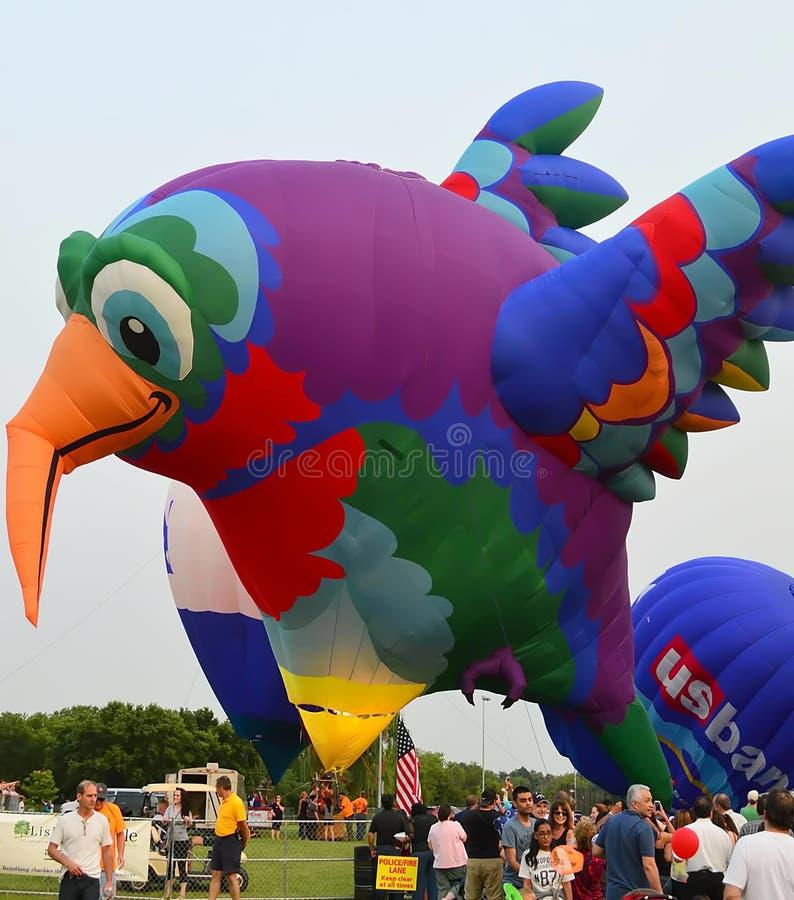 Ballons à air commençant à piloter - des yeux au festival de cieux photos libres de droits