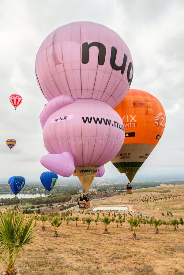 Ballons die in Canberra Australië tijdens jaarlijks evenement vliegen stock foto