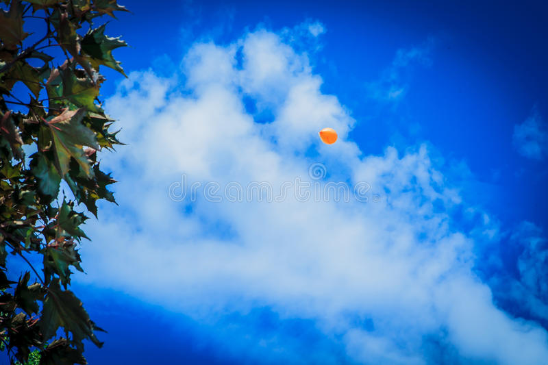 Balloon in the blue sky royalty free stock images