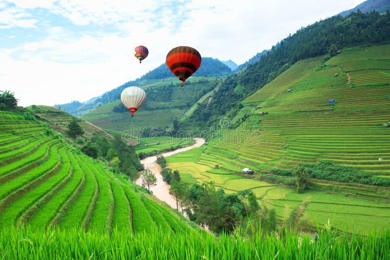 Balloon o flutuador nos campos do arroz em terraced de MU Cang Chai, YenBai, Vietname fotos de stock royalty free