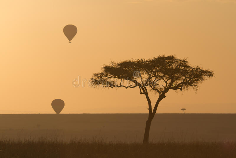 Balloons over the masai mara royalty free stock image