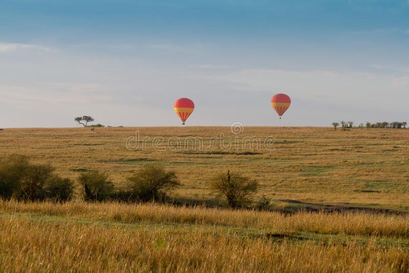 Balloons over the masai mara royalty free stock photos