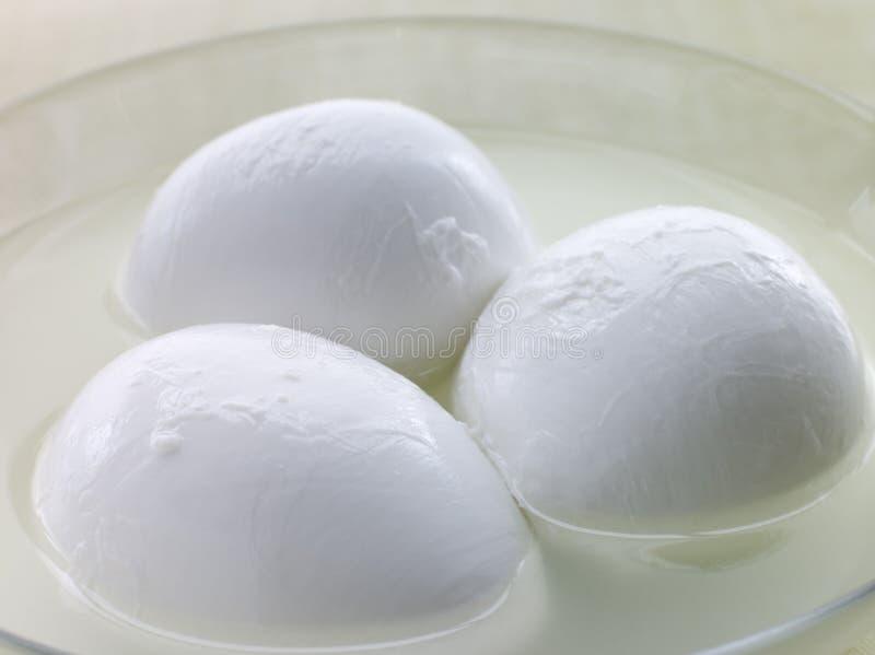 Balls of Buffalo Mozzarella stock images