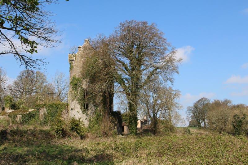 Ballyclogh城堡黄柏爱尔兰 库存照片