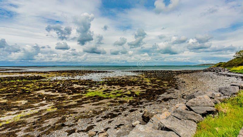 Ballyvaughan海滩的美好的全景  库存照片