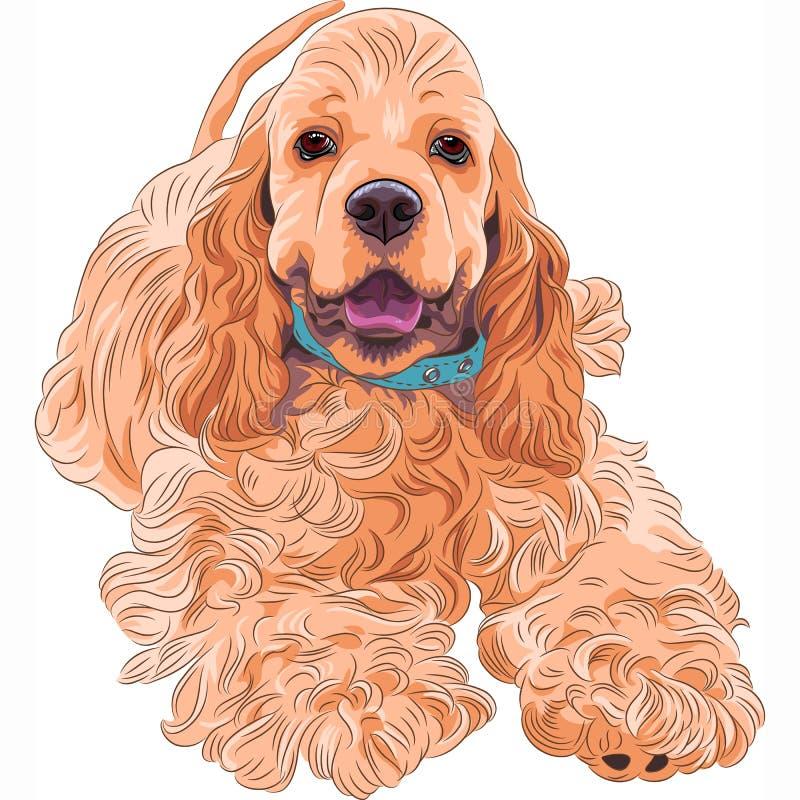 Balneario americano lindo del cocker de la raza del perro del vector que se divierte stock de ilustración