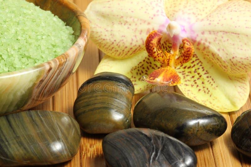 Balneario de la orquídea imagen de archivo