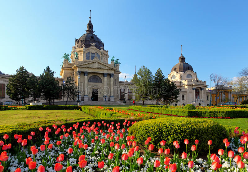 Balneario de Szechenyi con la flor - Budapest, Hungría fotografía de archivo