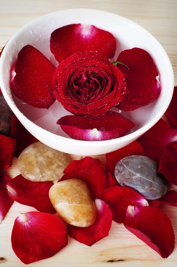 Balneario del pétalo de Rose imágenes de archivo libres de regalías