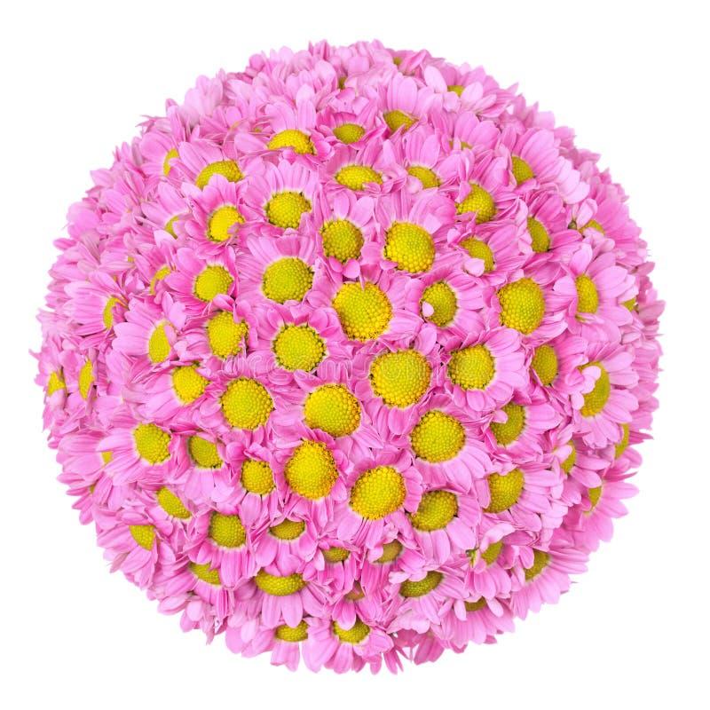 balowy kwiat fotografia royalty free