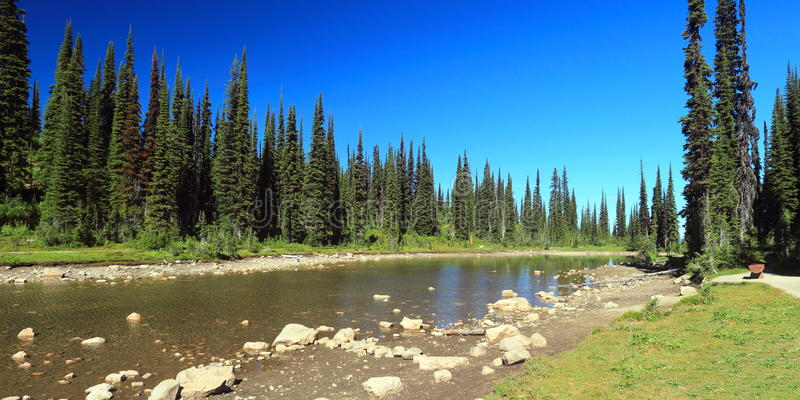 Balsam Lake on Mount Revelstoke, British Columbia. Balsam Lake in the Meadows in the Sky at the top of Mount Revelstoke is only fed by water from melting snow in stock images