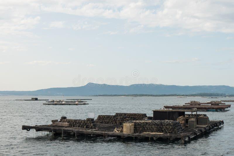 Balsas de la acuicultura del mejillón, Batea, en el estuario de Arousa imagen de archivo libre de regalías