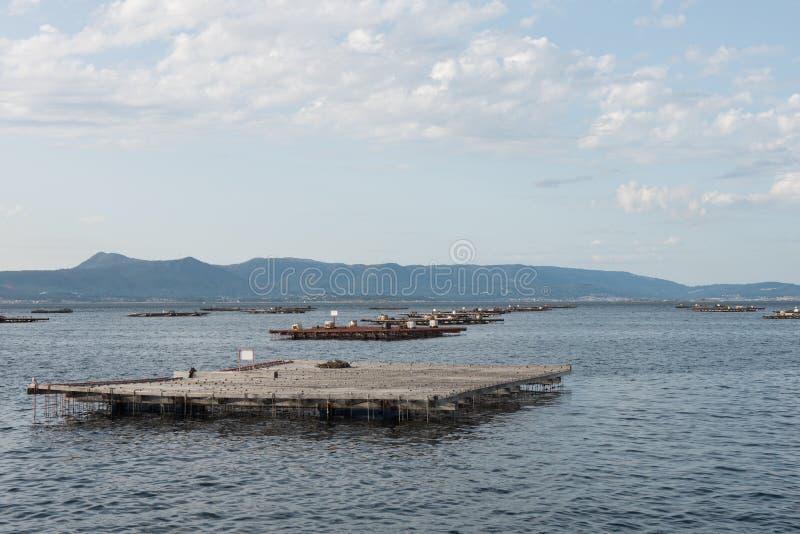 Balsas de la acuicultura del mejillón, Batea, en el estuario de Arousa fotos de archivo libres de regalías