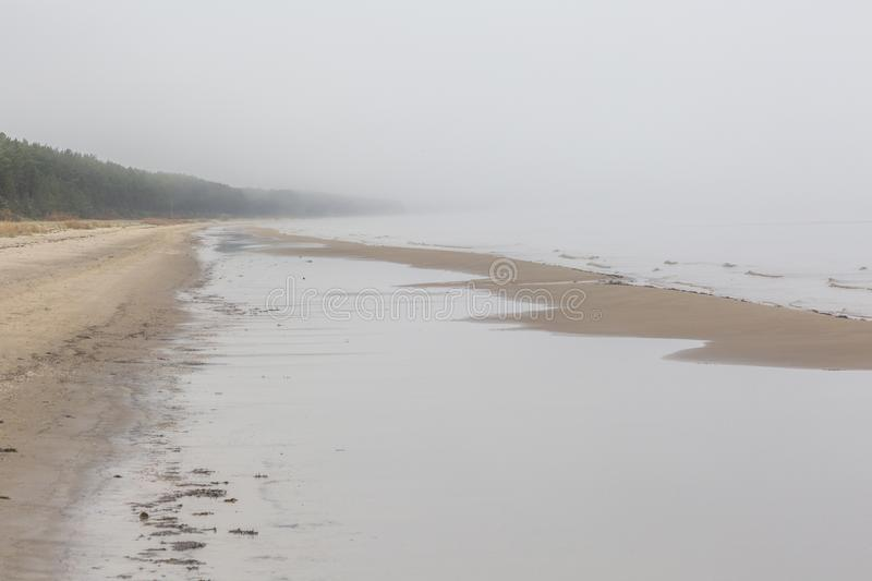 The Baltic coast in the fog. The Gulf of Riga. Autumn. There is a cold foggy day. No sun, no warm, no wind and waves. The ground cowers a thin frost. Thre are no royalty free stock image