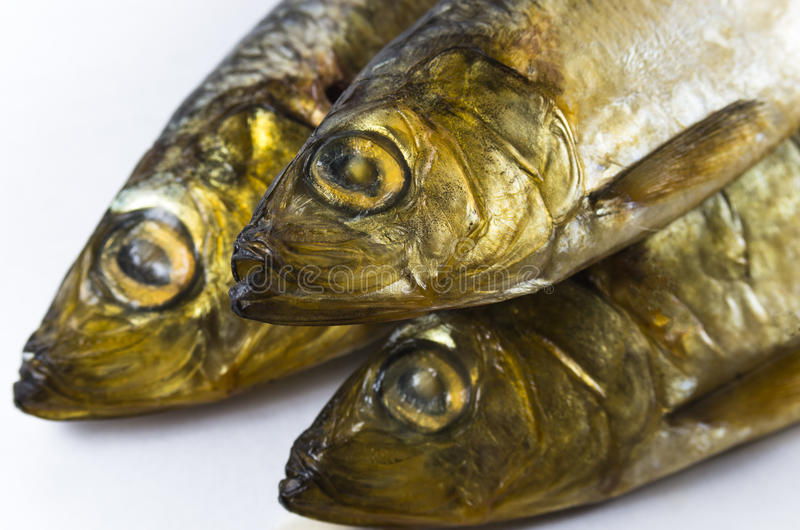 Baltic herring, smoked royalty free stock image