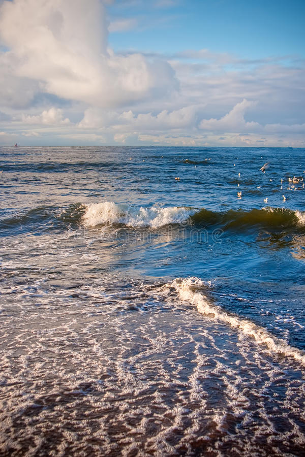 Download Baltic Sea stock photo. Image of element, europe, tide - 18235826