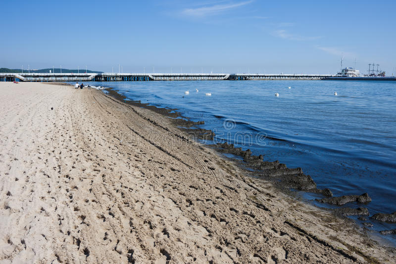 Baltic Sea Beach and Pier in Sopot stock images