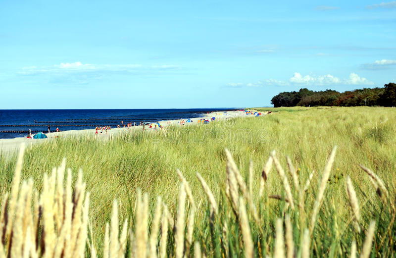 Baltic sea coast royalty free stock images